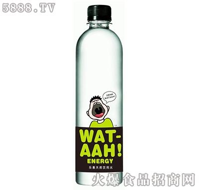 乐熹天然饮用水520ml绿瓶