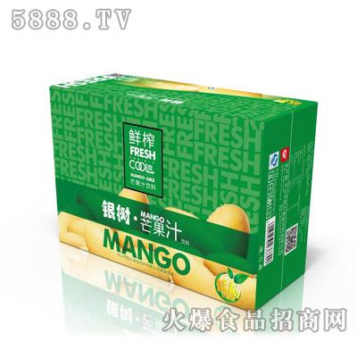 银树芒果汁饮料箱装