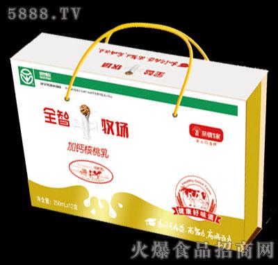 亲情1家全智牧场加钙核桃乳250mlx12盒