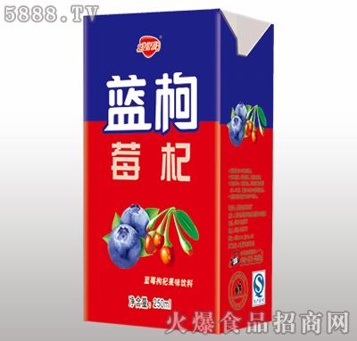 金娇阳蓝莓枸杞果味饮料250ml