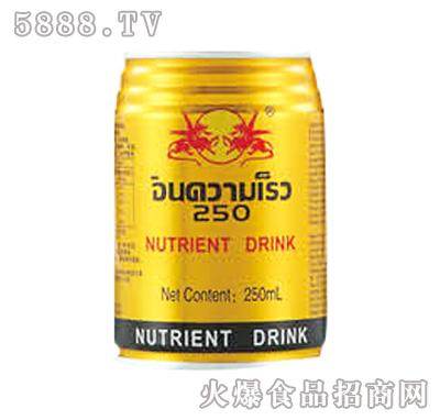 劲速双龙动能饮料250ml