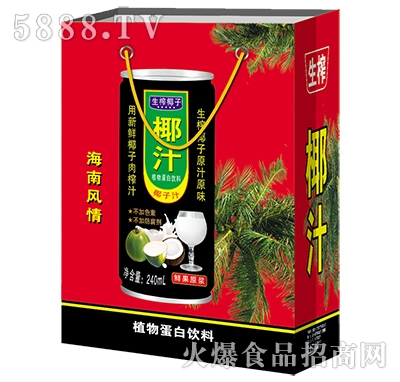 生榨椰子汁植物蛋白饮料(手提袋)