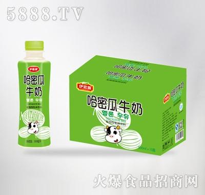 哈密瓜牛奶500mlx15瓶