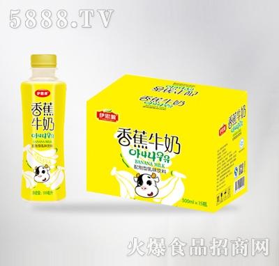 伊思源香蕉牛奶500mlx15瓶