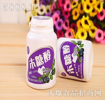 48g创健木糖醇蓝莓味口香糖