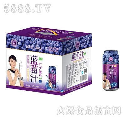 汇之果蓝莓汁960mlX6罐产品图