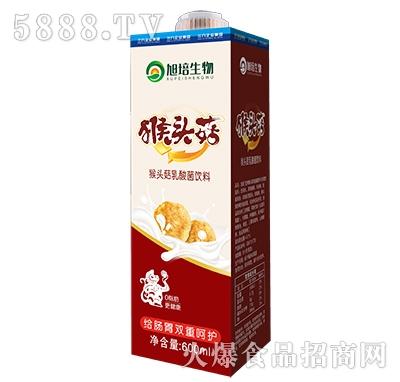味盟猴头菇乳酸菌饮料600ml