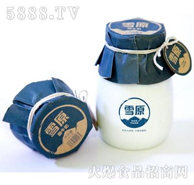 瓷雪原酸牛奶200g