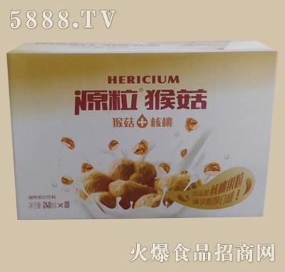 源粒猴菇果粒核桃植物蛋白饮料(规格240mlX20)