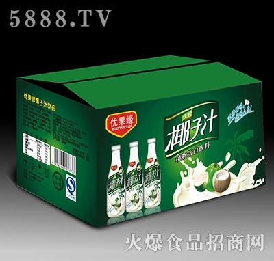1.25L优果缘生榨椰子汁植物蛋白饮料箱装产品图