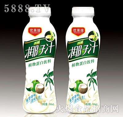 500ml优果缘生榨椰子汁植物蛋白饮料产品图