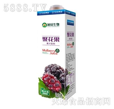 旭培聚花果果汁饮料800ml