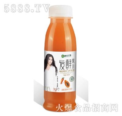 复合发酵果蔬汁