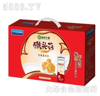 旭培600ml猴头菇礼盒