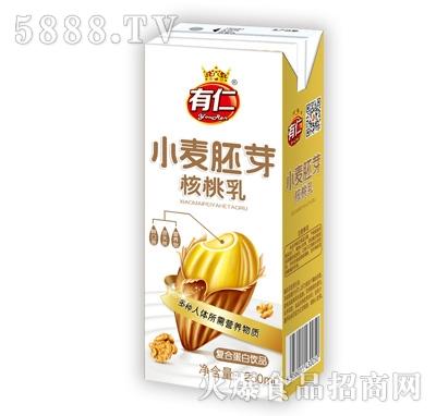 有仁小麦胚芽核桃乳复合蛋白饮品250ml
