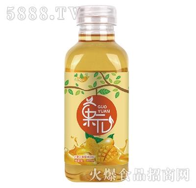 �元芒果乳酸菌味饮料瓶500ml