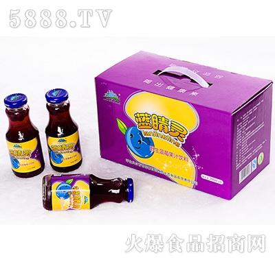 蓝睛灵野生蓝莓果汁饮料