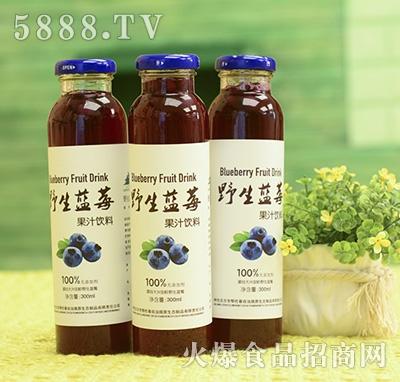 野生蓝莓果汁饮料瓶装300ml