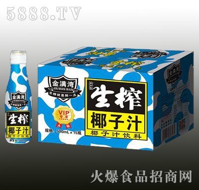 金满湾生榨椰子汁500mlx15瓶