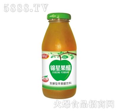 锦星发酵型苹果醋