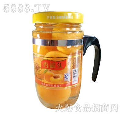 蒙康608g杏罐头