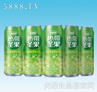 480mlx9罐热带圣果水晶葡萄