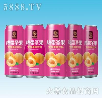480mlx9罐热带圣黄桃
