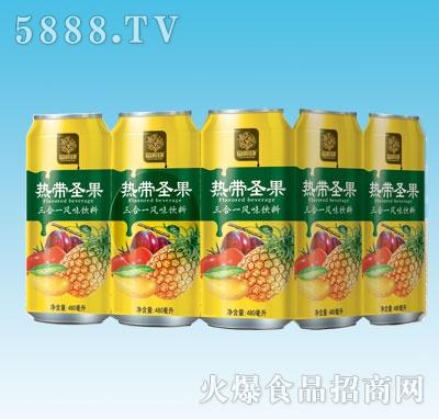 480mlx9罐三合一风味饮料