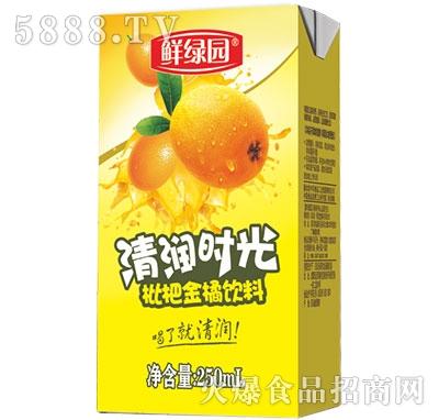 枇杷金橘饮料250ml