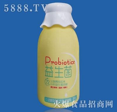 京港生物益生菌发酵型含乳饮品