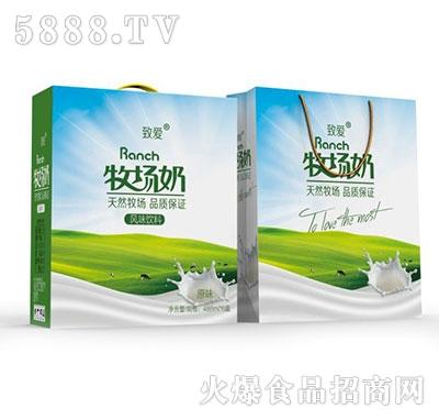 488mlx6盒致爱牧场奶风味饮料