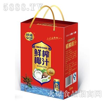 核桃小镇鲜榨椰汁植物蛋白饮料含果粒240mlX20罐礼盒