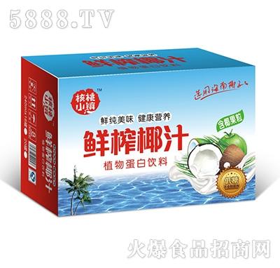 核桃小镇鲜榨椰汁植物蛋白饮料含果粒240mlX20罐箱子