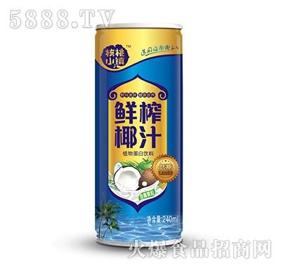 核桃小镇鲜榨椰汁植物蛋白饮料含果粒240ml