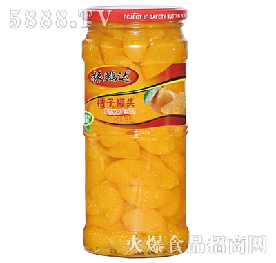 700g振鹏达桔子罐头