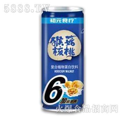 初元食疗猴菇核桃饮品