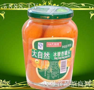 沂蒙大自然甜杏罐头880g