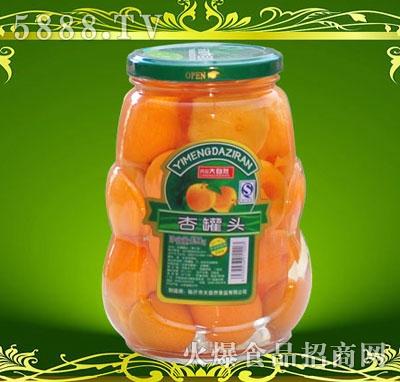 沂蒙大自然甜杏罐头890g