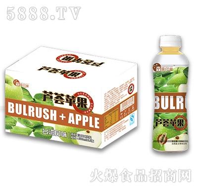 500mlx15瓶森果印象芦荟苹果饮料