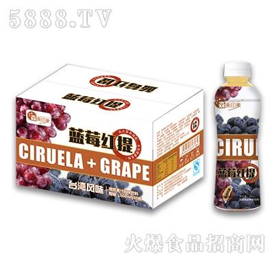 500mlx15瓶森果印象蓝莓红提饮料
