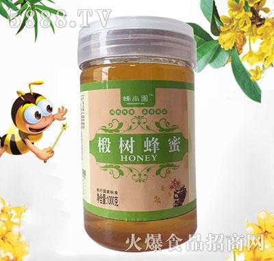 蜂尚园椴树蜂蜜国标1000克