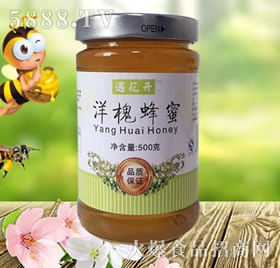 遇花开椴树蜂蜜500克圆瓶铁盖