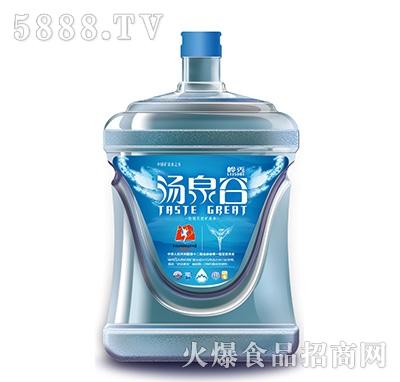 桶装水5l|内蒙古天汇山泉水有限责任公司-火爆食品网.