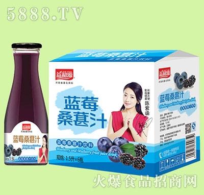 1.5Lx6瓶益和源蓝莓桑甚汁