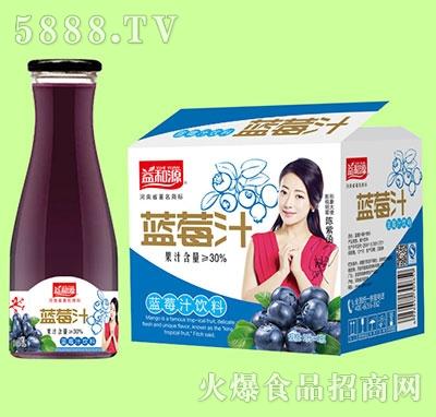 1Lx6瓶益和源大口蓝莓汁