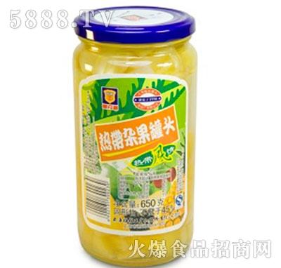 梅林650g热带杂果罐头
