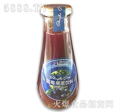 盛知梅蓝莓果浆饮料