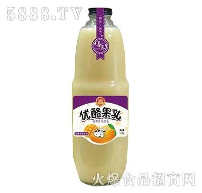 善养优酪果乳芒果1.5l