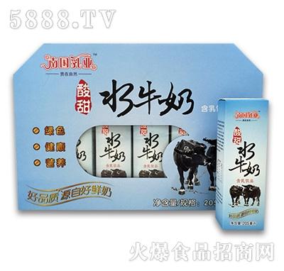 205mlx12酸甜水牛奶