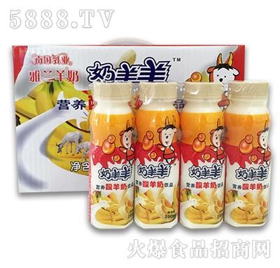 200mlx24香蕉奶羊羊酸羊奶
